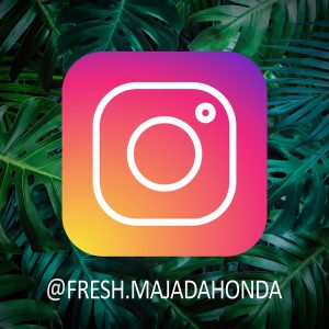 instagram fresh madrid